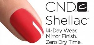 cnd-logo-1
